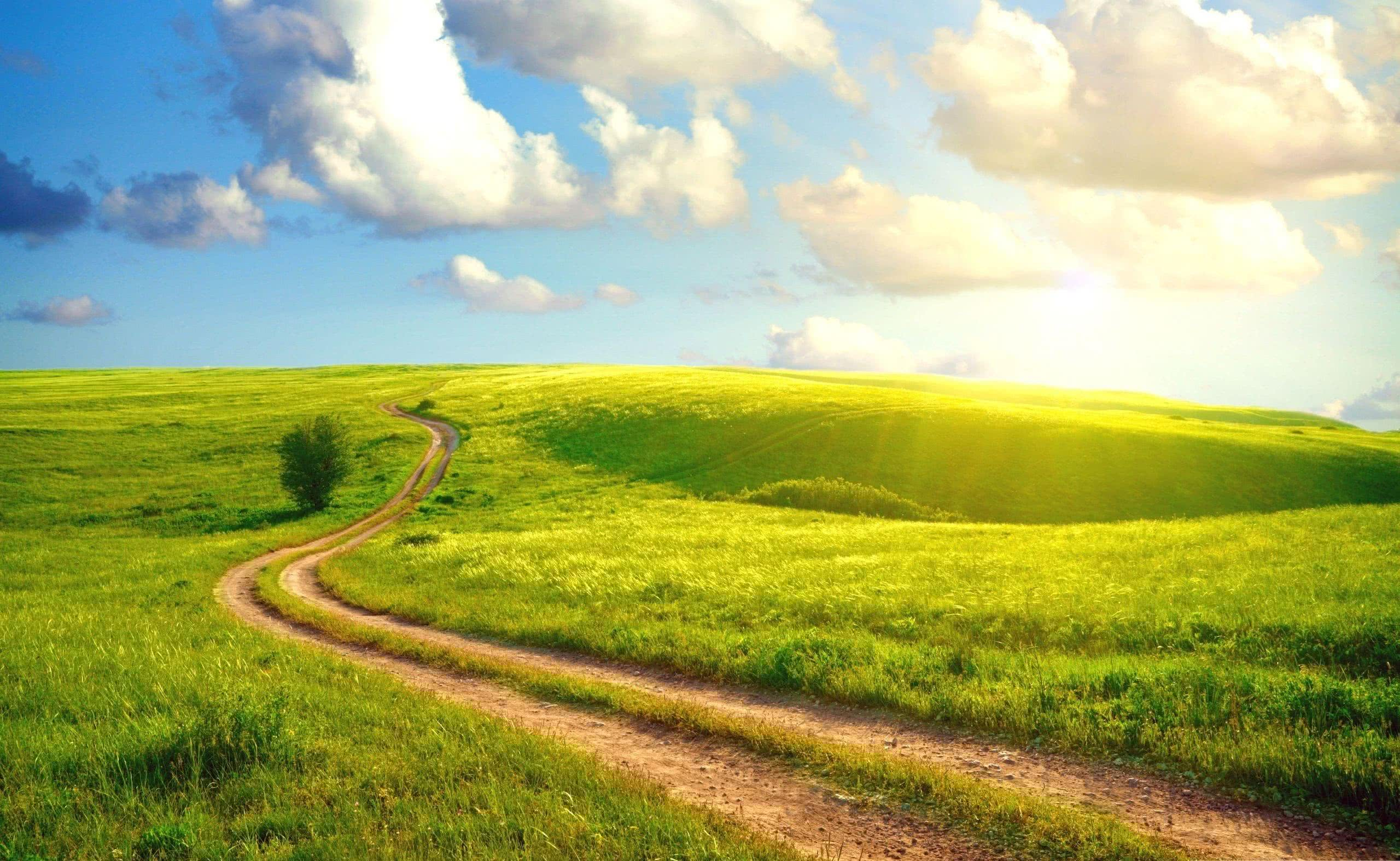 How To Stay On The Path Of Recovery